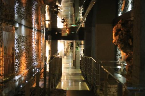 Rynek Underground (Podziemia Rynku)