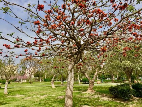 Heulin Park – Jardín de la Abadía Park