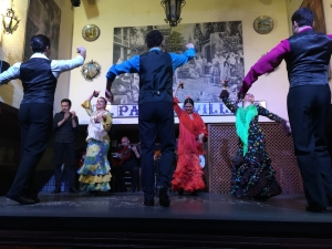Flamenco at the El Patio Sevillano