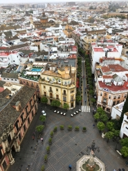 View from the Giralda