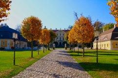 Blick auf das Schloss Rammenau