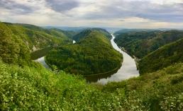 Blick vom Aussichtsturm auf die Saarschleife